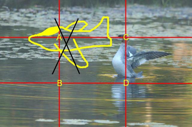 http://www.pilote-virtuel.com/img/gallery/1338585787.jpg